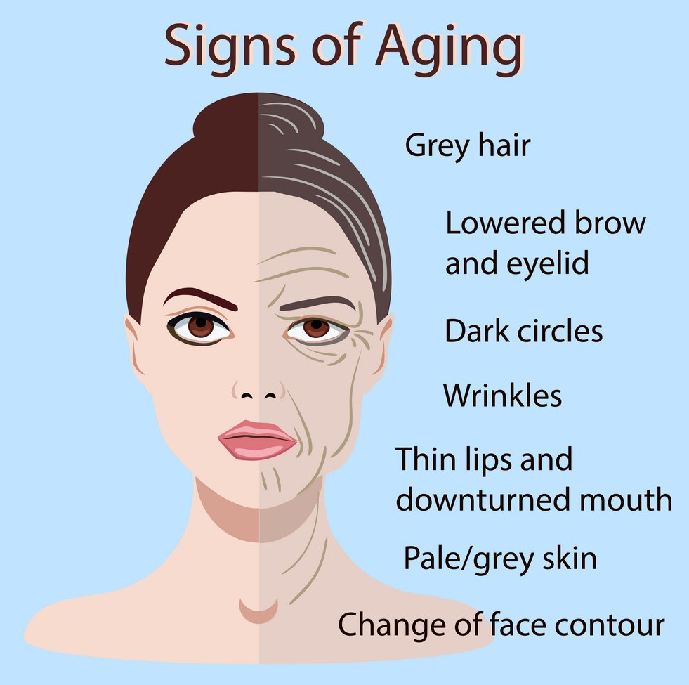 skin aging signs
